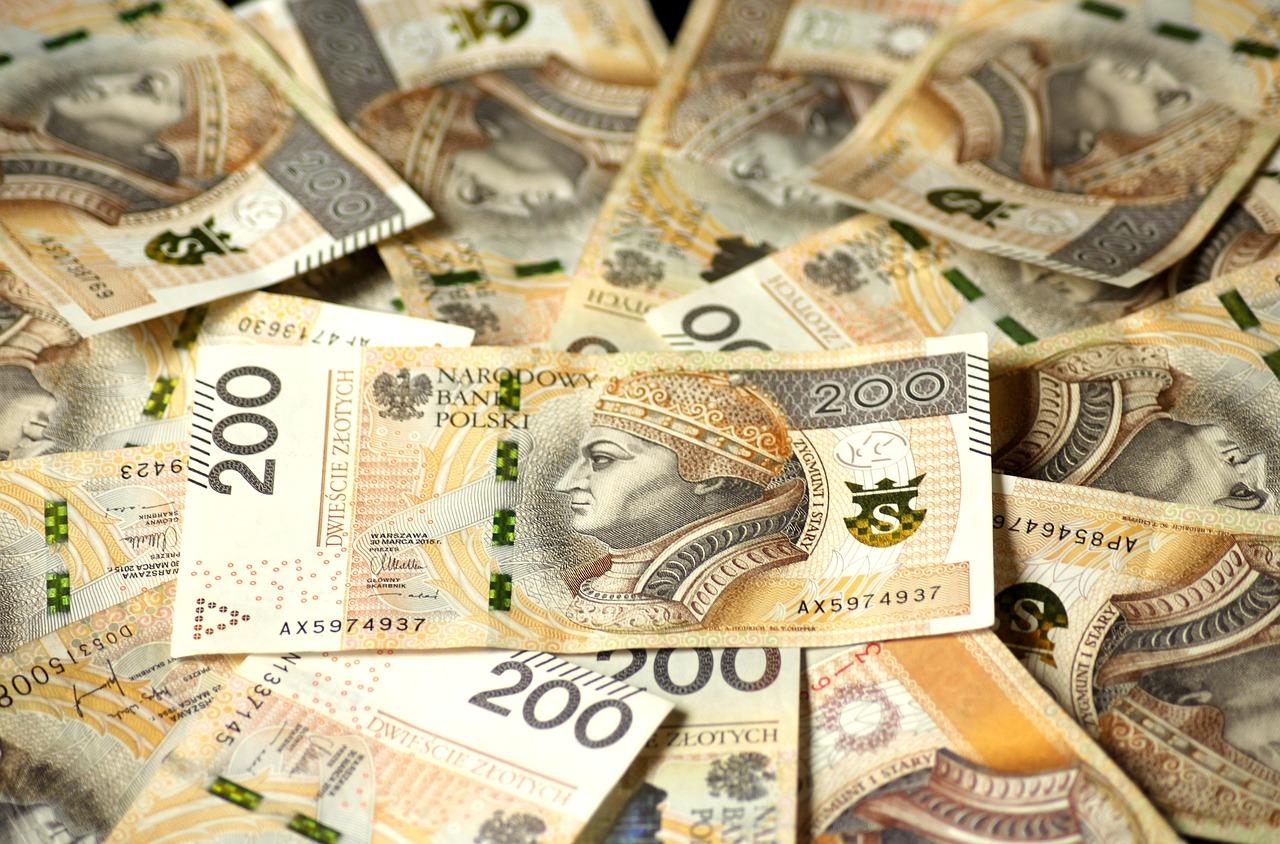 Interessante Währungen Europas – über den polnischen Zloty